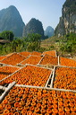 content/stories/Asia/Guilin_China.htm/preview/_09g6761.jpg