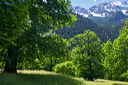 content/stories/Europe/Bergell_Valley,_Switzerland.htm/preview/val_bregaglia_07m0386.jpg