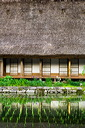 content/stories/Japan/Shirakawa_world_heritage.htm/preview/shirakawa-go_japan_06j0464.jpg